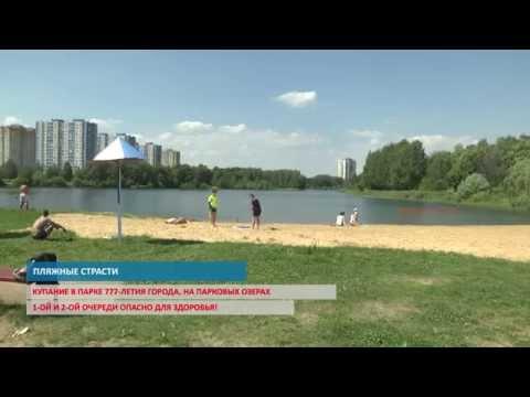Не все пляжи Нижнего Новгорода одинаково полезны для здоровья