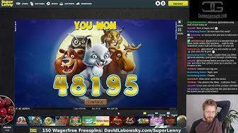 Mega wins on Wolf Cub, the new NetEnt game