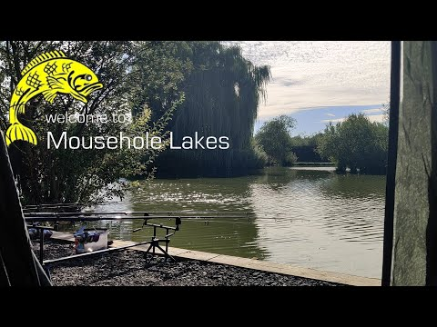 ***Carp Fishing*** Mousehole Kingfisher Lake PT2