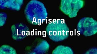 Agrisera Loading controls