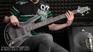 Бас-гитара SCHECTER HELLRAISER EXTREME-5 demo