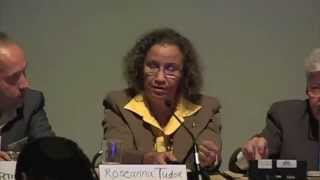 D4ALL2014 - Session 10 : Roseanna Tudor, Barbados Council for the disabled