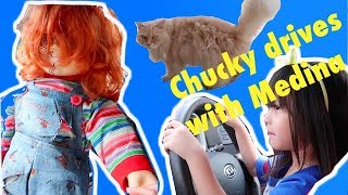 Medina and Chucky drives together! Chucky meets our house cat for the first time!