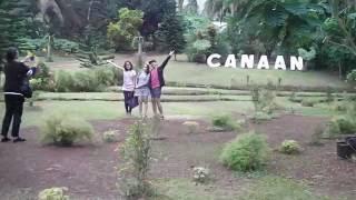 Canaan Hills and Bee Farm