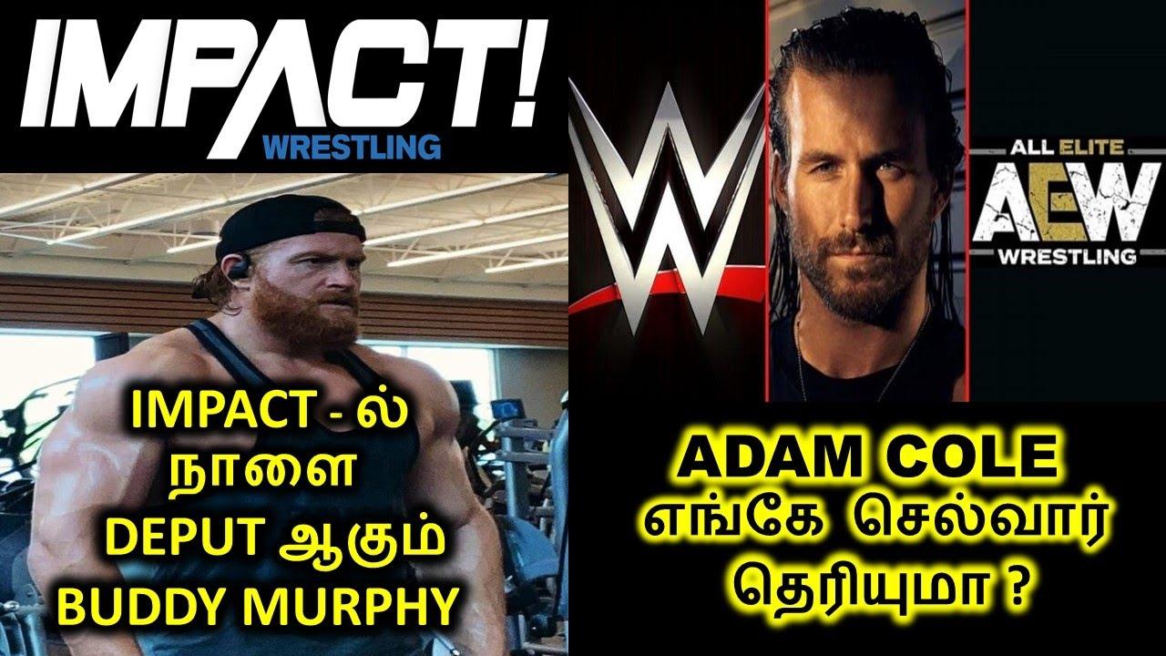 BUDDY MURPHY DEBUT IMPACT | ADAM COLE ON AEW | WWE ROMAN REIGNS VS BROCK LESNAR | CM PUNK ON AEW