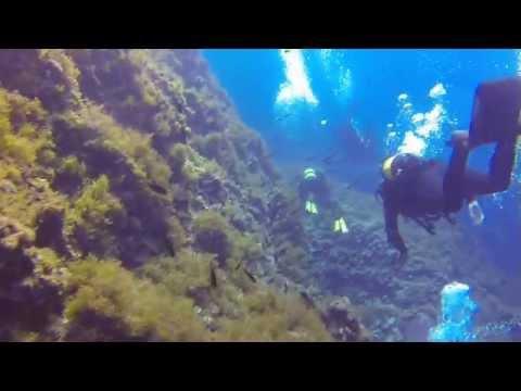 "tauchen auf Mallorca - Diving with ""Marina Tramontana Diving"" - CuevaAzul - Port De Soller - 2014"