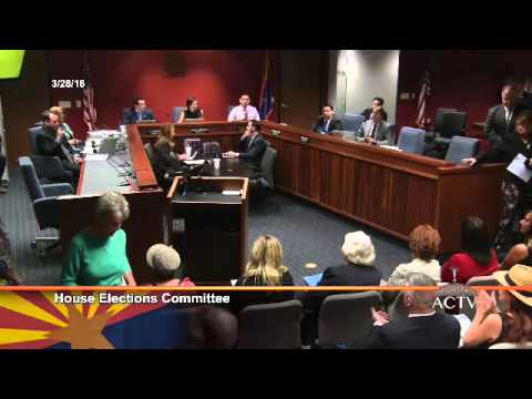 Arizona State Legislature Election Hearing - Public Comments