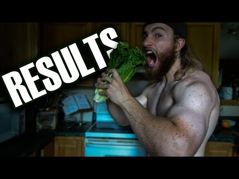 15 Days Of Eating No Processed Foods RESULTS