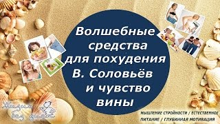 Волшебные средства для похудения, Владимир Соловьёв и чувство вины