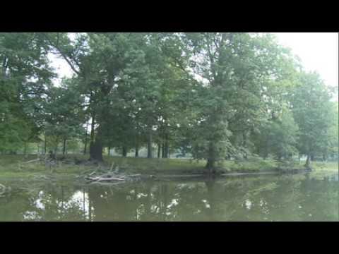 The River, Lansing, MI