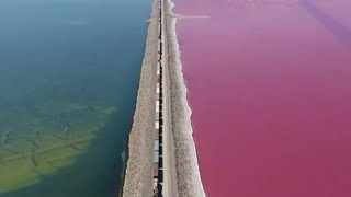 Railroad divides Great Salt Lake into two parts: pink and blue