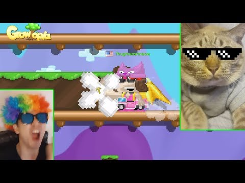 CAT REVEAL! MY CAT PLAYS GROWTOPIA!?