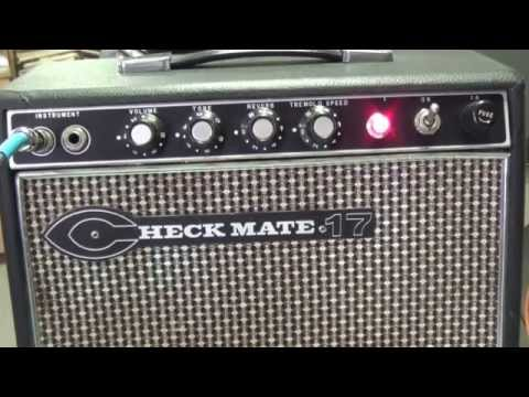 Teisco Checkmate 17 Tube Amplifier Detailed