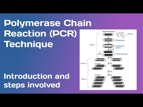polymerase-chain-reaction-(pcr):--introduction-and-steps-involved