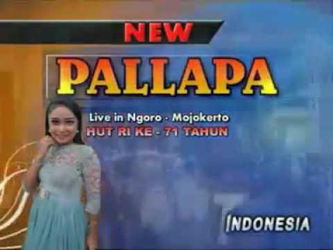 New Pallapa live Pare 2009 - Novi Andarista(1)