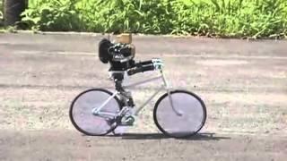 Робот катается на велосипеде / Robot rides on a bicycle