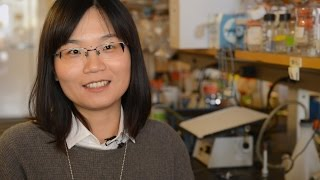 Gene therapy slows vision loss in mouse models