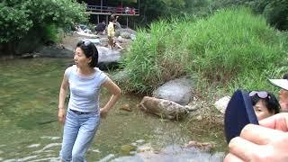 2010 (양평) 사나…