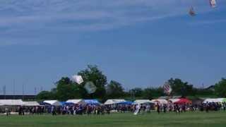 三条凧合戦2013