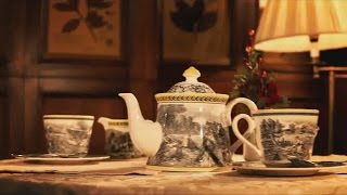 Enerwood Dream: путешествие начинается. Все про чай, NL Products