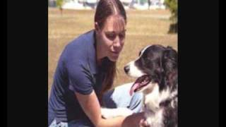 Dog Training For Calgary