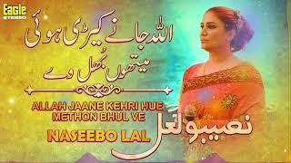 Allah Jaane Kehri Hue Methon Bhul Ve | Naseebo Lal | Eagle Stereo | HD Video