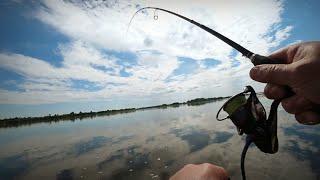 Оснастка которая всегда выручает Трудовая рыбалка на Оке