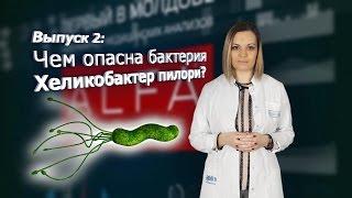 [AlfaMedBlog] 2. Чем опасна бактерия Хеликобактер Пилори?
