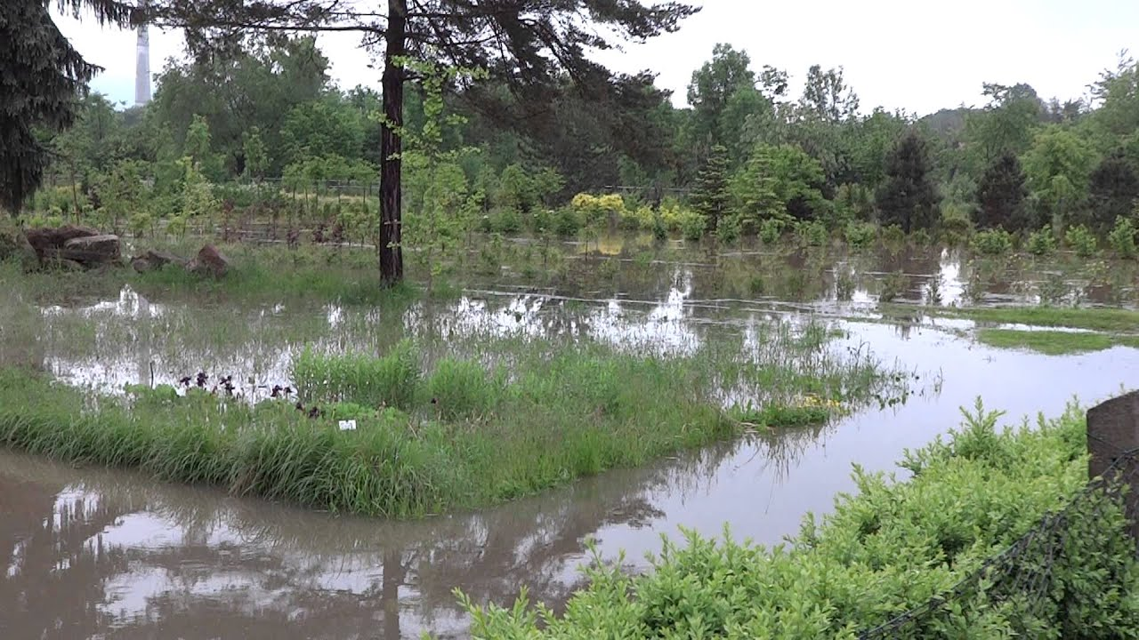 Überschwemmung Hochwasser in Jena 01. Juni 2013 Teill 3 ...