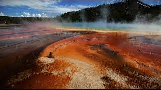 Hundreds of earthquakes near Yellowstone supervolcano up eruption fears