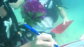Подводная свадьба на Самуи. RDC - Русский дайвинг клуб на Самуи.(Подводная свадьба на Самуи. Русский дайвинг клуб RDC., 2013-06-15T02:36:37.000Z)