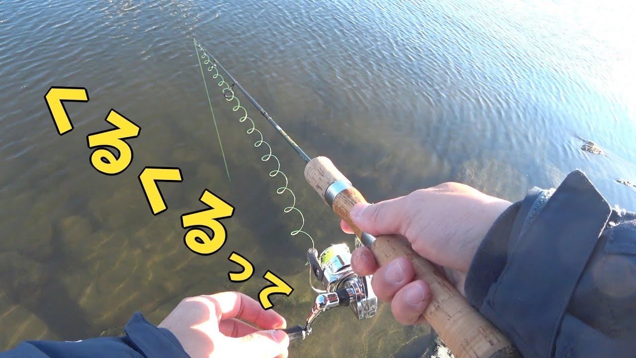 東京の冬 その辺の川の穴でハゼ釣ってサクッと天丼よ
