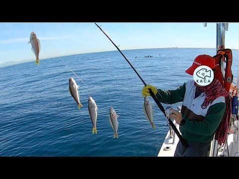 How To Catch Delicious Ocean Whitefish In San Pedro!