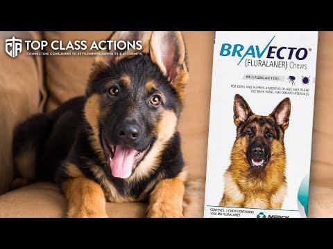 Lawsuit Claims Bravecto Medicines Aren't Safe For Pets