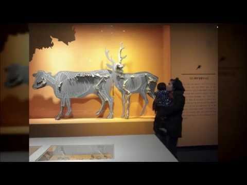 The National Museum of Korea, in Seoul, KOREA - DECEMBER 2015 Usmanov