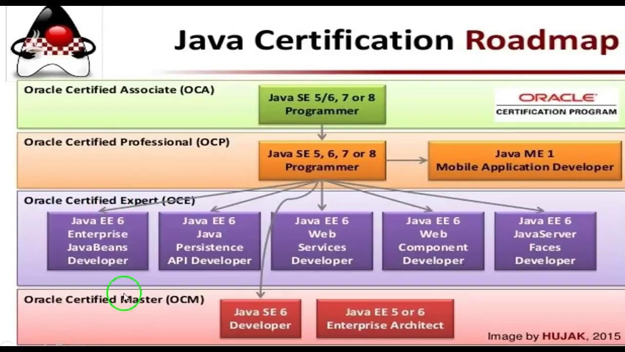 5 Best Java Certification Books For Students Preparing For Java