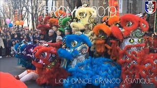 Lion Dance Franco Asiatique (英武堂) LDFA - PROMO 2019, Paris XIII (France)