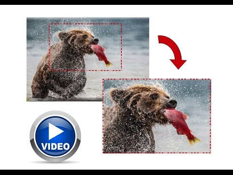 How to cut out video size resolutions