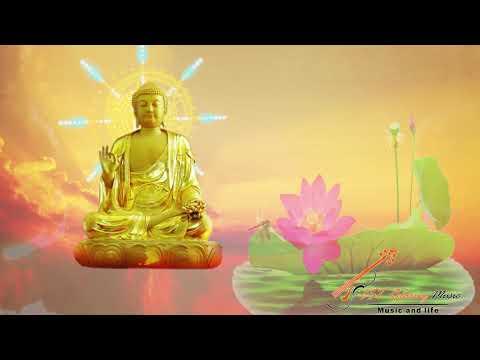 Nhạc Thiền Tĩnh Tâm Dài 8h   Nghe Để Xóa Đi Muộn Phiền Trong Cuộc Sống - Relaxing Meditation