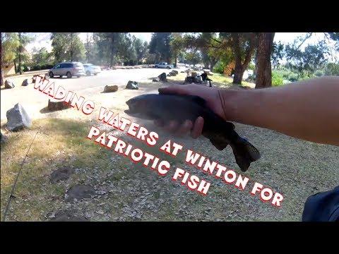 Veterans Day Fishing Winton Park Fresno County, CA