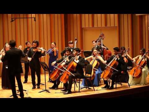 Leos Janacek, Idyll for Strings, movement 2, 3, 4
