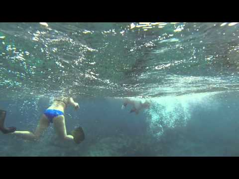 Spearfishing in Turks & Caicos, Snorkeling