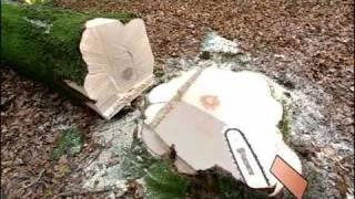 Валка деревьев бензопилой (Husvarna)(Видеоролик от компании Husvarna - как правильно свалить (спилить) дерево., 2011-01-21T14:39:56.000Z)