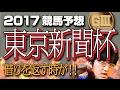 【競馬予想】 2017 東京新聞杯 借りを返す時が!!