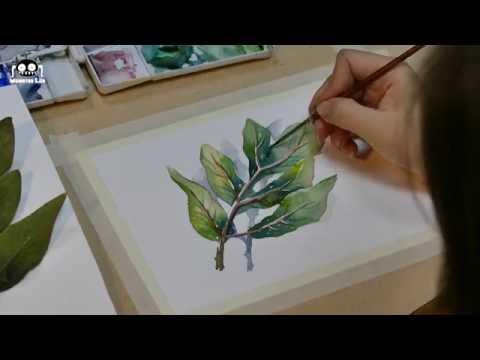 Hướng Dẫn Vẽ Màu Nước (Số thứ 1): Vẽ Chiếc Lá [Màu Nước Mỗi Ngày]