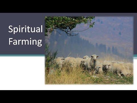 Spiritual Farming