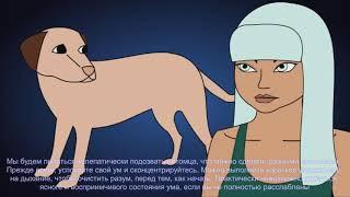 Общение с животными – Экстрасенс животных, Коммуникатор животных и телепатия(ЗЕРКАЛЬ)