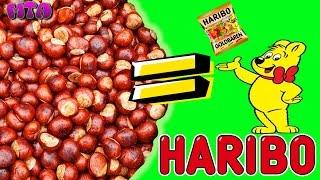 ✔ Die große HARIBO KASTANIENAKTION ✔ Меняем Каштаны на ХАРИБО