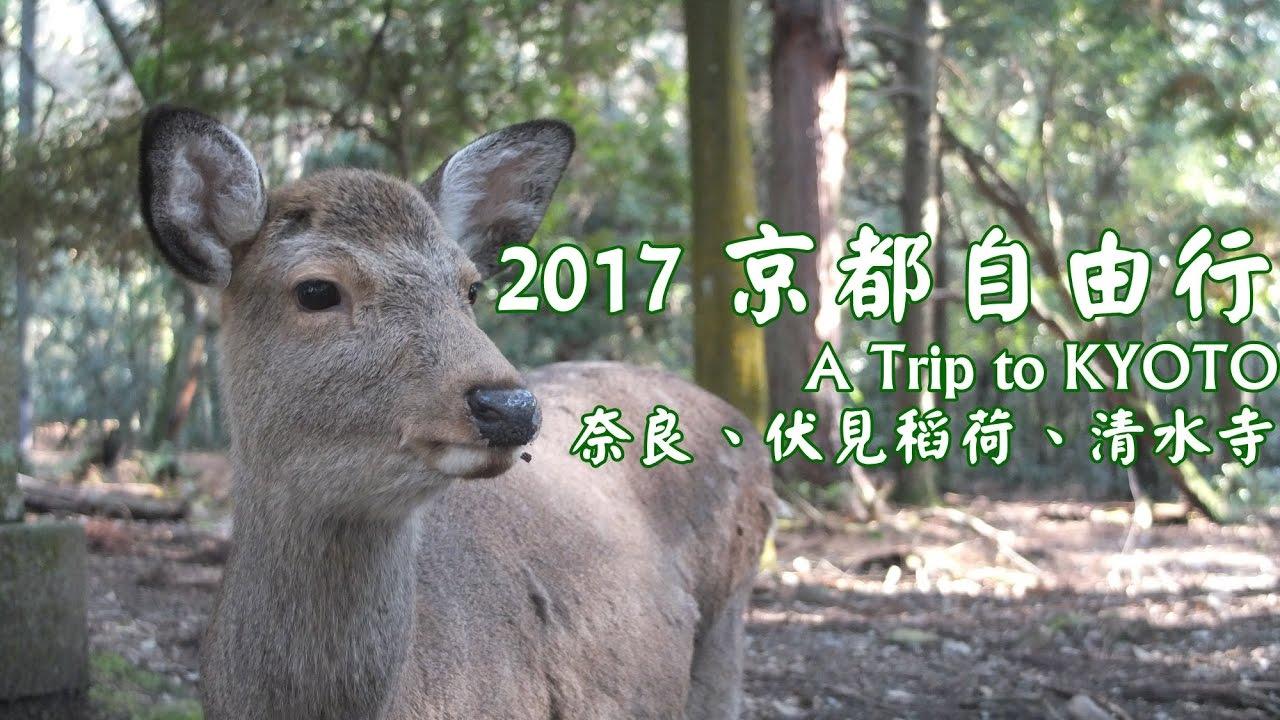 2017京都自由行(下):奈良東大寺,金閣寺 ...