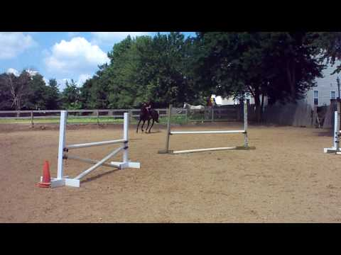 little rider big horse-emergency dismount